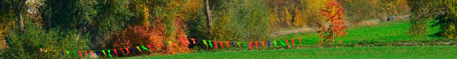 Foto von Fähnchenkette in Landschaft