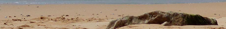 Foto von Meeresstimmung